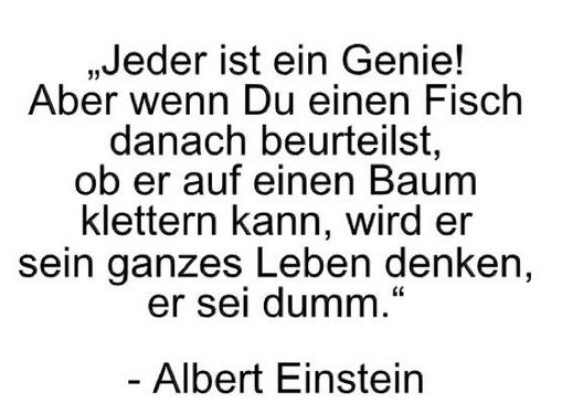 Zitat Für Den Tag Albert Einstein Geben Leben I